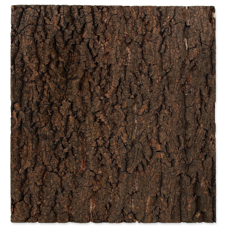 Pozadí REPTI PLANET korek přírodní 43,5 x 41 x 2 cm