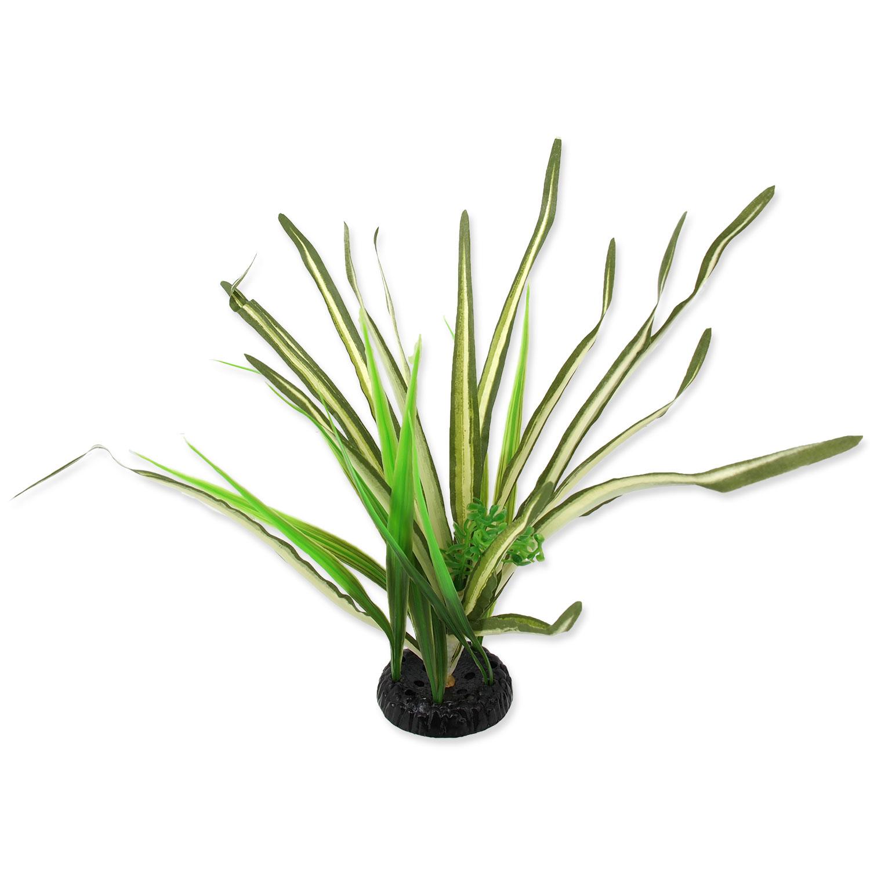 Rostlina REPTI PLANET travina Spartina 30 cm