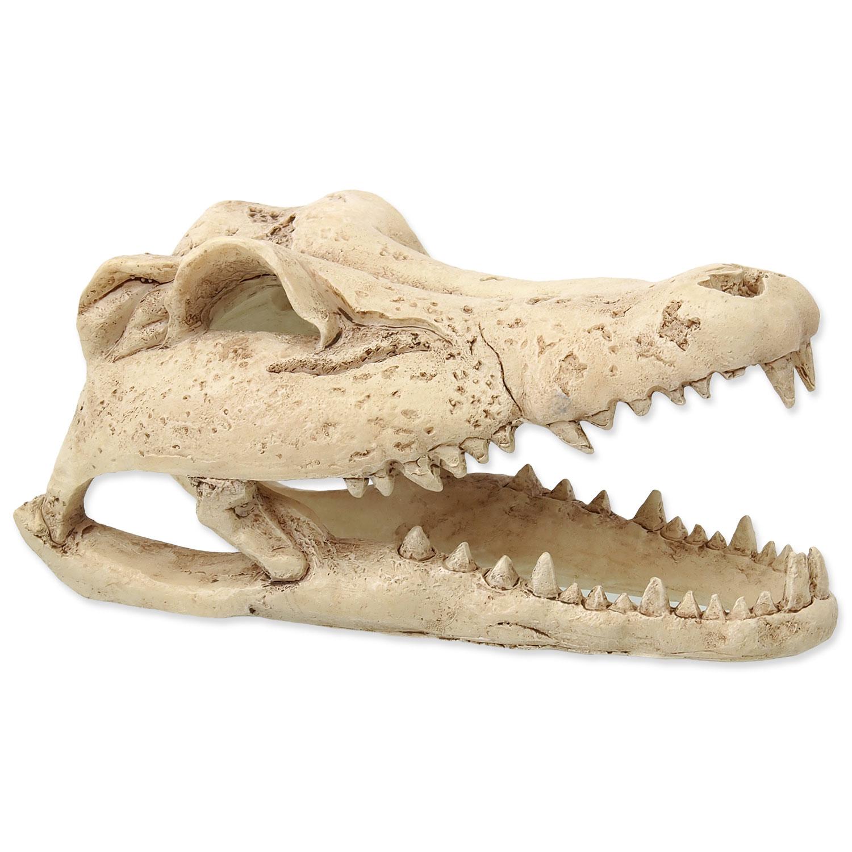 Dekorace REPTI PLANET Krokodýlí lebka 13,8 cm